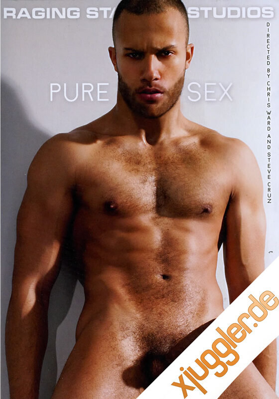 Pure Sex Gay DVD Bild