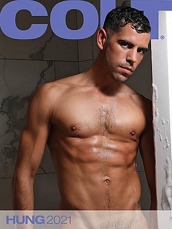 Colt Wandkalender - Hung 2021 Gay Buch / Magazin Bild
